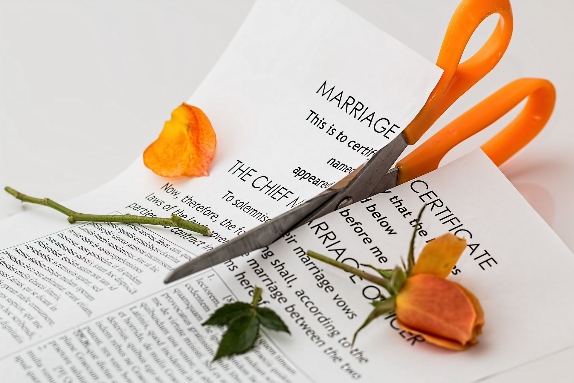 bankruptcy-and-divorce